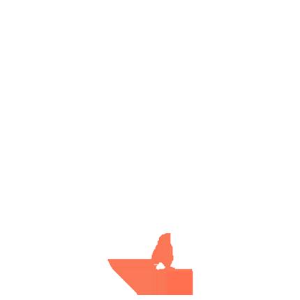 GlobeSA